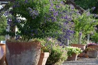 Jardineras de terracota