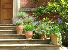 Jardineras clásicas